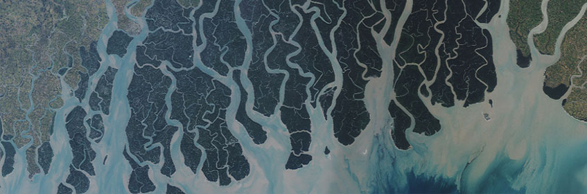 The Sundarbans in Bangladesh