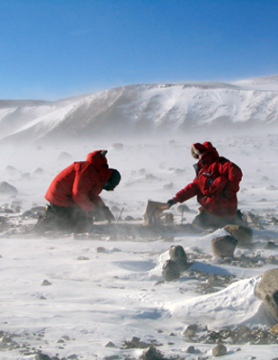 Geologists in the Transantarctic Mountains.