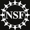 NSF All White Bitmap Logo
