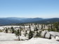 granite domes and conifer trees in the mountains