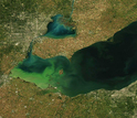 Satellite view of a widespread algae bloom in Lake Erie.
