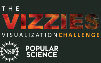 The Vizzies visualization challenger open