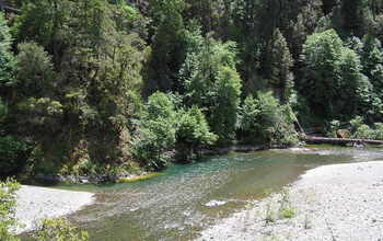 California's Eel River