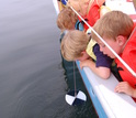 Children looking at a Secchi disk being lowered into the water to measure transparency