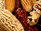A genome-level approach to balancing the vitamins in maize, or corn, grain is a PGRP project.
