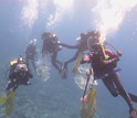 A team of divers descending to survey and sample a reef for microbes.