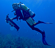 A SCUBA diver on a U.S. Virgin Islands coral reef, collecting samples for the microbiome project.