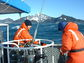 Scientists at the Northern Gulf of Alaska LTER site conduct research off the coast of Alaska.