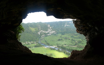 Caves are critical habitats for Greater Antilles bats. Bats rebound slowly from loss of habitat.