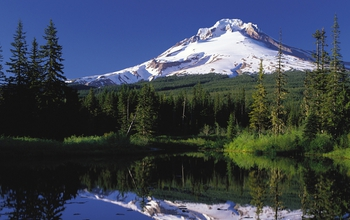 view of  Mount Hood reflecting in a lake