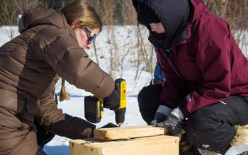 Two researchers preparing a nest box.