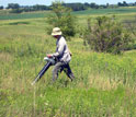 entomologist Chris Dietrich vacuming for insects in tallgrass prairie.