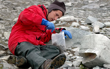 Scientist with soil sample in the Antarctica