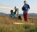 Photo of biologists David Hooper and Leslie Gonzalez measuring plant diversity and productivity.
