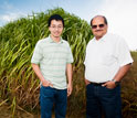 Photo of Praveen Kumar and Phong Le at a miscanthus research plot in Champaign, Ill.