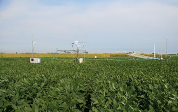 Photo of the Soybean Free Air Concentration Enrichment.