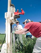 researchers at Kellogg Biological Station collect soil cores