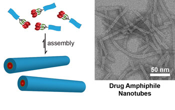Schematic illustration of the design concept for self-assembling drug amphiphiles