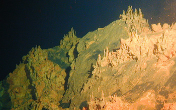 Loihi Seamount structures built by iron-oxidizing microbes.