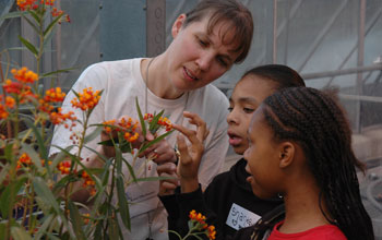 Karen Oberhauser with children observing a flowering plant