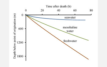 Graph of time after death of copepod versus depth below point of origination as function of salinity
