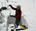 Photo of Chris Landry in June 2007, measuring snow water equivalence in a snowpit.