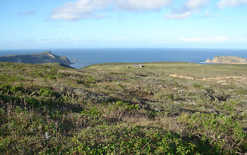 Photo of a Channel Islands landscape.