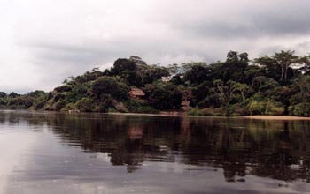 Photo of river dwellings on the Iriri River in the Brazilian Amazon.