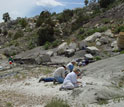 Photo of scientists unearthing dinosaur fossils at Como Bluff Quarry, Wyoming.