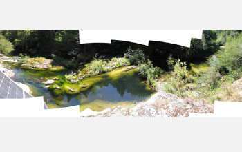 Photo of algae in Gothic Pool on California's Eel River.