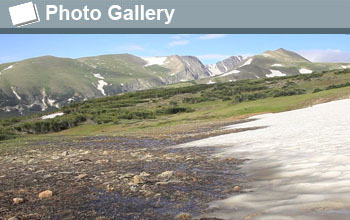 Image of melting snow and the text Photo Gallery