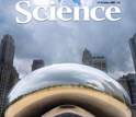 Image of the cover of the October 31, 2008 edition of Science, featuring a large sculpture.