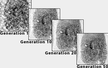 Fingerprint image quality through subsequent generations of genetic algorithm evolution.