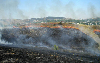 Hillside grassfire in Rapid City, S.D., burned within 30 feet of a weather forecast office.
