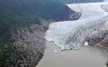 Aerial photo of new forests above the shrinking Mendenhall Glacier.