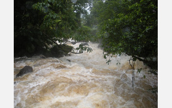 Photo showing a raging torrent of water overflowing its banks in Puerto Rico.