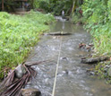 Photo of stream where Ashley Golphin and colleagues measured the reach from first to last riffle.