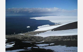 Photo of Ross Ice Shelf at Cape Crozier.