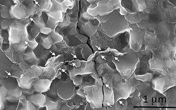 Image of graphene platelets around silicon nitride grain boundaries.