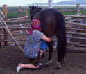 Photo of a Kazakh woman milking mare at Kenetkul village, northern Kazakhstan.