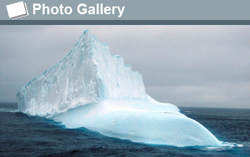 Photo of an iceberg and the words Photo Gallery.