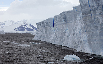 Ice shelf and sea