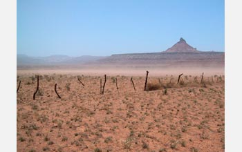 Photo of the Canyonlands National Park which endured extreme wind erosion during the 2001 drought.