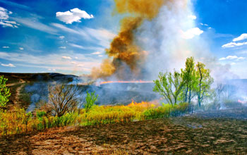 Fire moves through grasslands at NSF's Konza Prairie LTER Site in Kansas