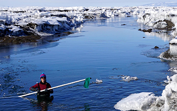 Alison Banwell in Antarctic meltwater