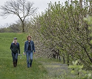 Two researchers walking through a field and looking up at nest box in the trees.