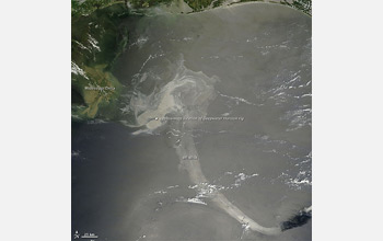 Satellite image showing oil on the Gulf's surface glinting in mid-day sunlight.