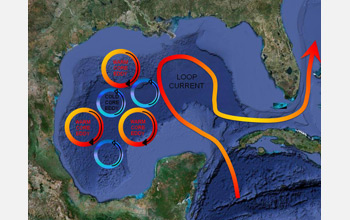 Illustration showing the Gulf's Loop Current, which may carry oil far afield.