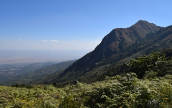 The East African Rift Valley, where the scientists conducted their field research.