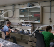 Back from the field: Studies of the new carnivore in a laboratory setting.